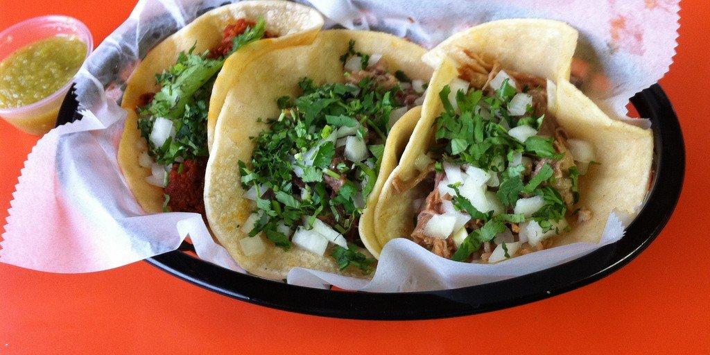 tacos e university