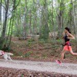 sport - canicross