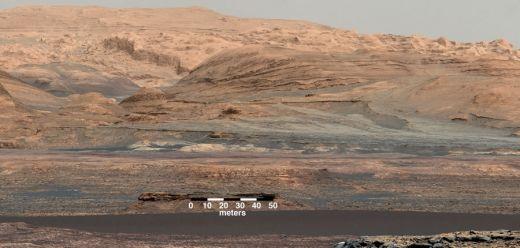Ue - coesione - Italia - ulivi - Marte