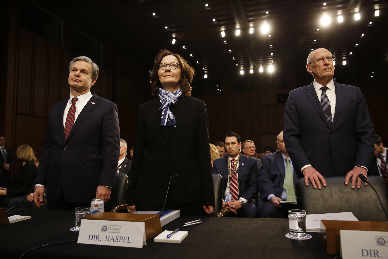 Usa - Coats, intelligence