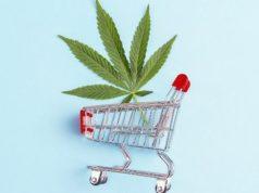 Ue - cannabis