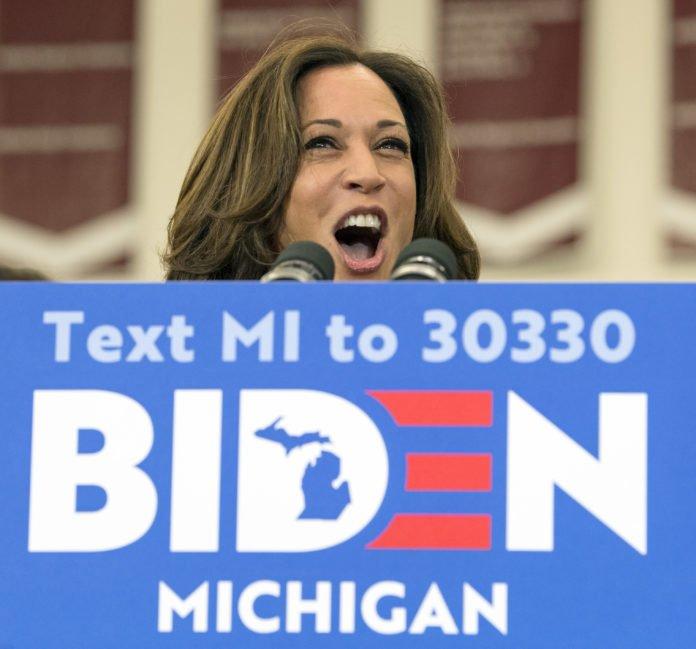 Usa 2020 - Michigan - Biden - Harris